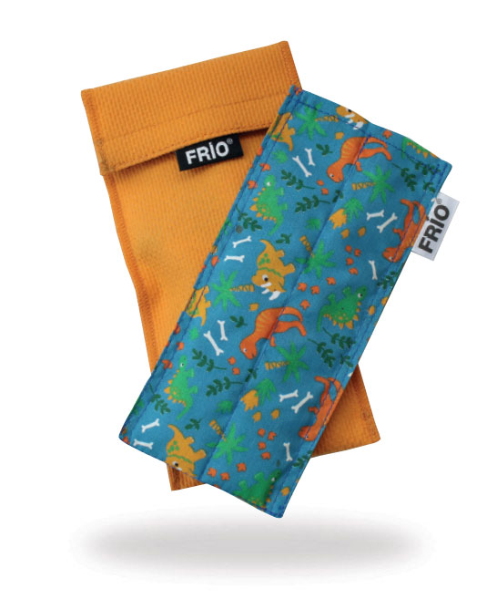 Frio Collection Dinosaur